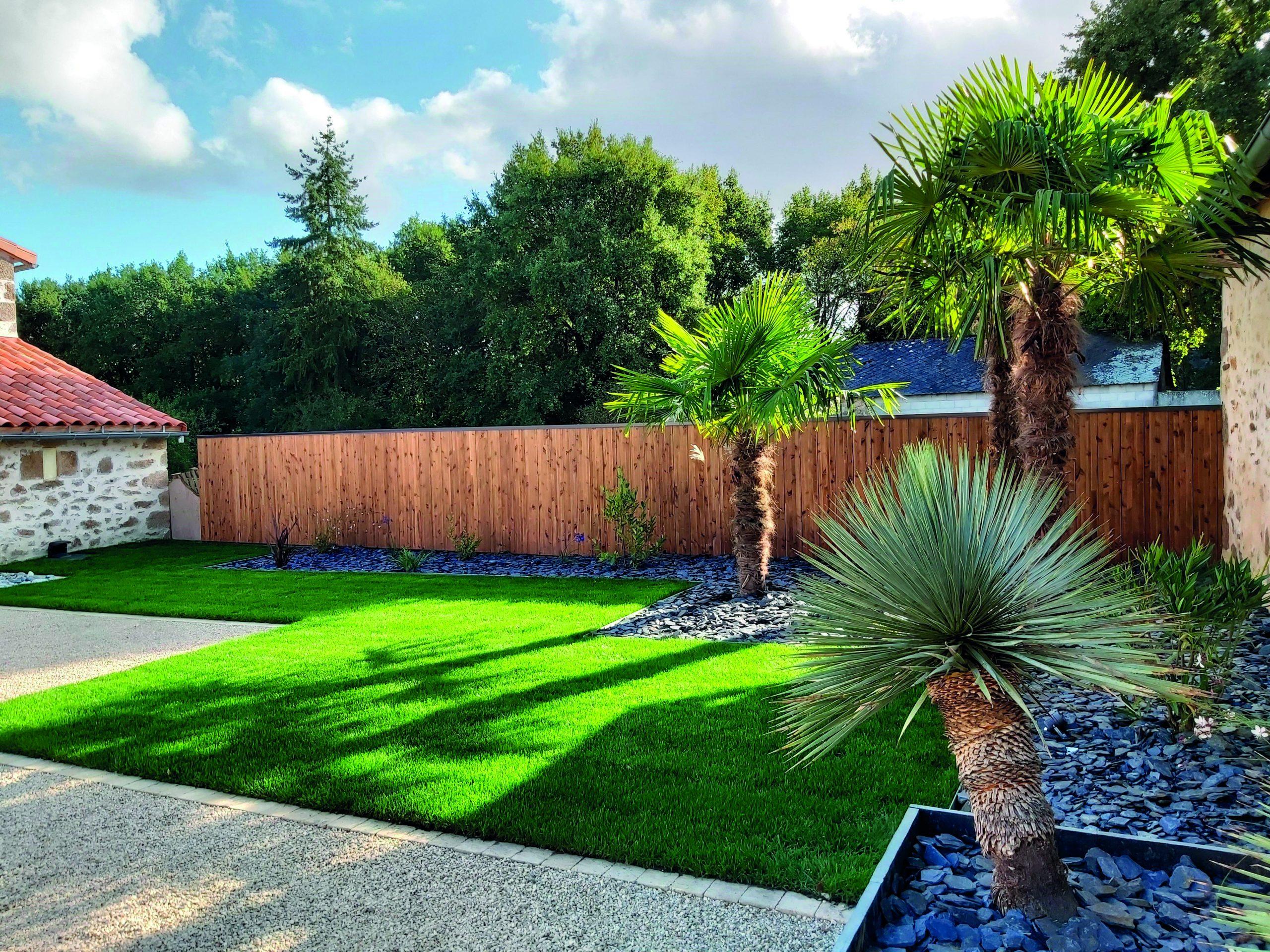 jardin verdoyant et palmier