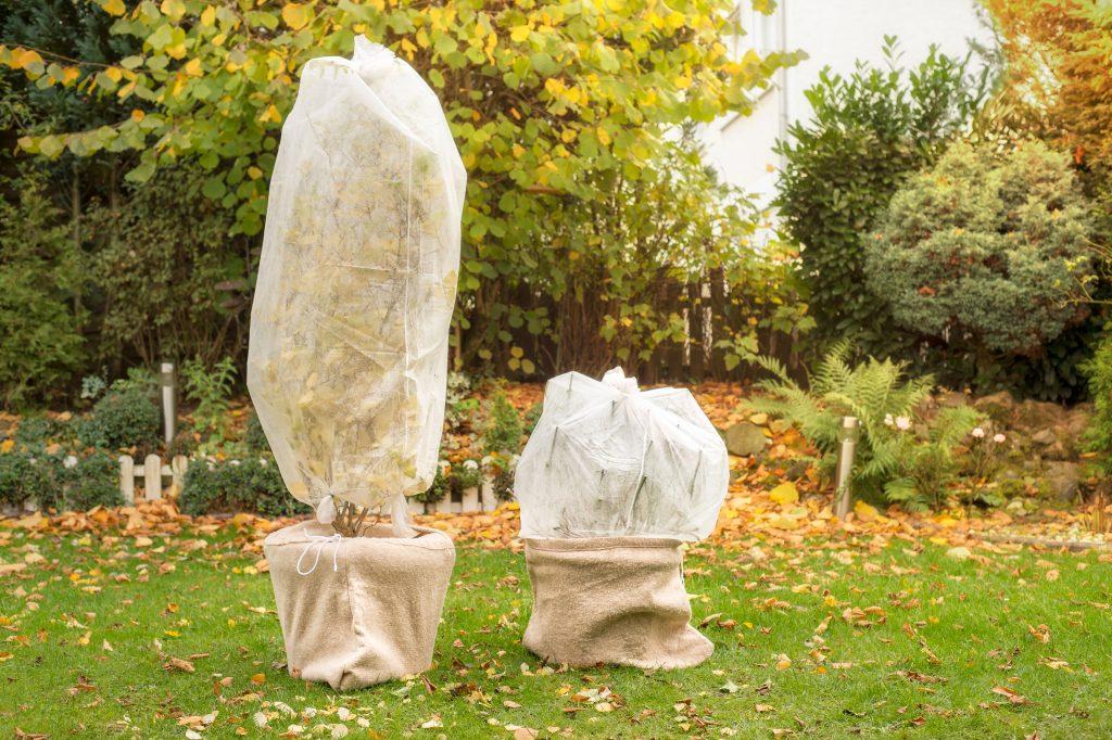 Obojardin vous donne ses conseils pour entretenir son jardin